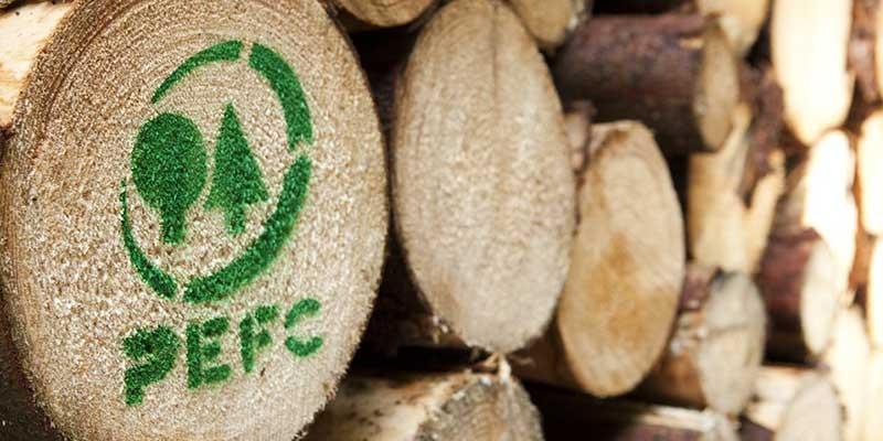 Foto von mehreren gesägten Baumstämmen mit dem PEFC Logo auf der Schnittfläche